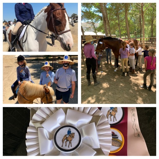 After School Horseback Riding at Trinity Eventing