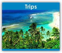 Trips and Events